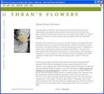 thrans-content.jpg