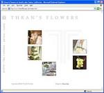 thrans-flashintro.jpg
